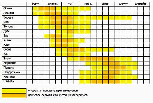 График концентрации аллергенов в воздухе